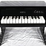 "Korg Tiny-Piano 25 Key C4-C6 Electric Piano Keyboard 15"" x 10"" x 11"" Black"