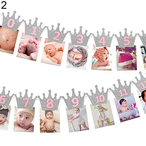 Crown Baby Photo Banner - 12 Months Picture Garland (WFRN), Baby First Year Frame, Nursery Banner Photo Frame (#2-Girl-Pink-Silver)