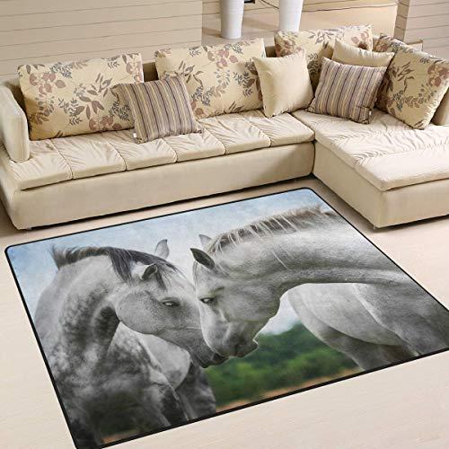 Trista Bauer Teppich für Pferdepaare, rutschfeste Teppichbodentürmatte 36x24 Zoll