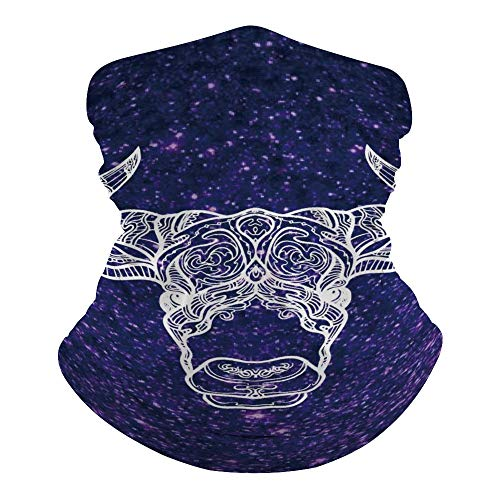 Tamengi Galaxy And Bull Head Magic Headbands Outdoor Headwear Seamless Bandana Sports Scarf Dust & UV Protection Face Cover Mouth Mask for Yoga Hiking Riding Motorcycling