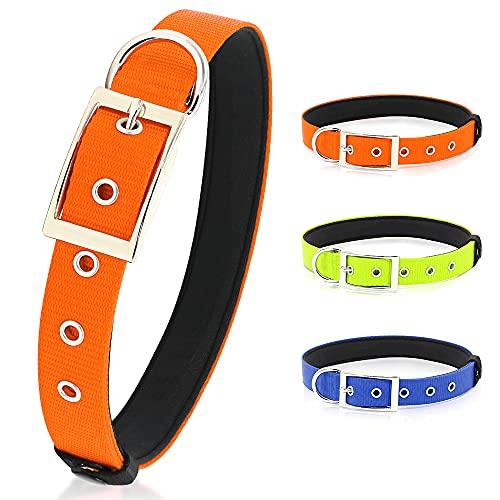 PZRLit Collar Perro Resistente con Suave Acolchado Neopreno, Hebilla de Metal y Anillo en D, Ajustable Transpirable Collares Perros Ancho para la Caminata Diaria Corriendo-Naranja,Grande