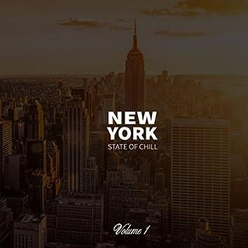 New York State Of Chill . Volume 1