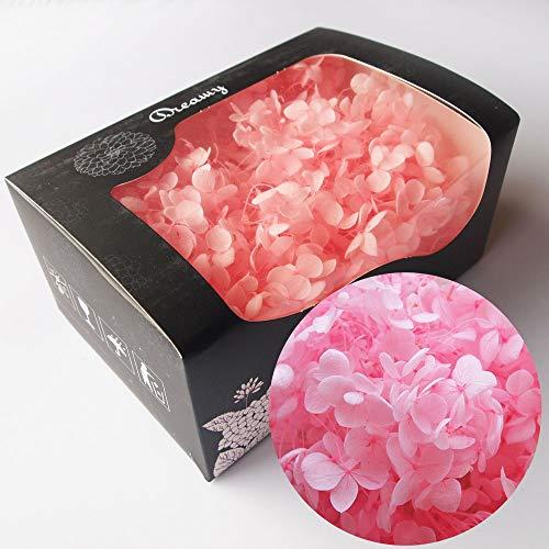 アジサイ・ヘッド 桃 約20g プリザーブドフラワー ピンク(b) 花材 ハーバリウム アクセサリー レジン パーツ クラフト あじさい 桃色 プリザ