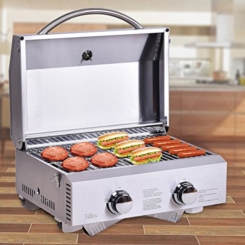 HAPPYGRILL Stainless Steel Propane Gas Grill, Portable Two-Burner BBQ Grill, Outdoor Grill with Foldable Leg for Camping Picnics, 20000 BTU Grills Propane