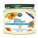 Hollywood Style White Glow Papaya Mud Mask - Refines, Purifies, Exfoliates (320gm Jar) - NEW Larger Size!