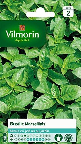 Vilmorin 5873246 Pack de Graines Basilic Marseillais Extrêmement Parfumé