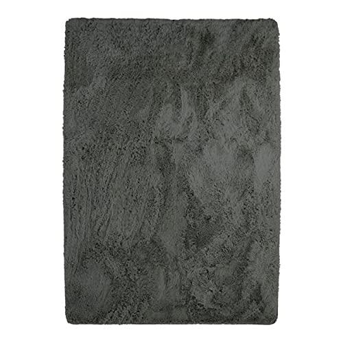 Tapis à Poils Longs Extra-Doux, 120cm x 170cm, Gris Foncé