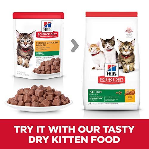 Hill's Science Diet Kitten Wet Cat Food Pouch, Chicken Recipe, 2.8 oz, 24 pk