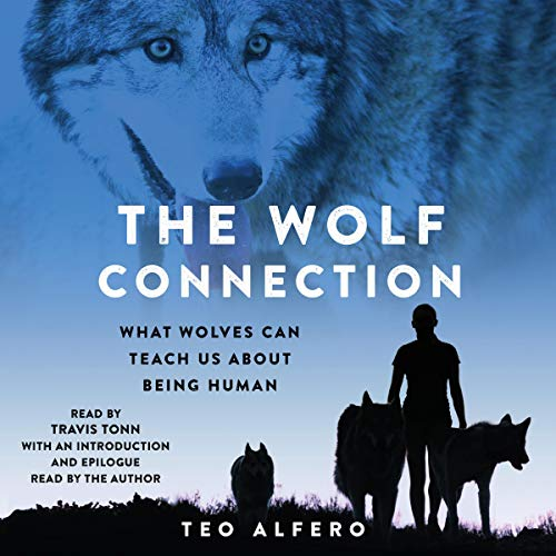 The Wolf Connection audiobook cover art