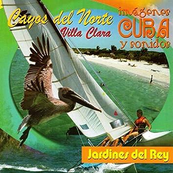 Cayos del Norte (Imágenes y Sonidos / Cuba)