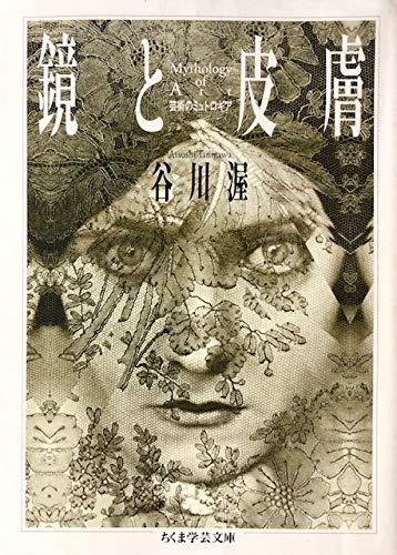 鏡と皮膚―芸術のミュトロギア (isの本)の詳細を見る
