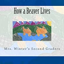 How a Beaver Lives
