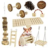miuline Hamster Chew Toys Set 10 Pack Wooden Pet Toy Small Pets Teeth Care Molar Toy Wooden Seesaw Dumbbells Exercise Bell Roller Swing Bucket For Guinea Pig Chinchilla Hamster Parrot Bunny