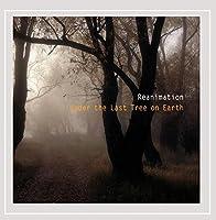 Under the Last Tree on Earth