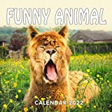 Funny Animal Calendar 2022: Photoshopped Animal October 2021 - December 2022 Squared Monthly Calendar Mini Planner with Gorgeous Animals Photos, Gift for Family, collage, Friends