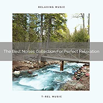 The Best Noises Collection For Perfect Relaxation