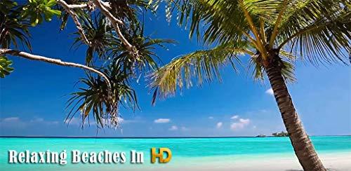『Relaxing Beaches In HD』の10枚目の画像
