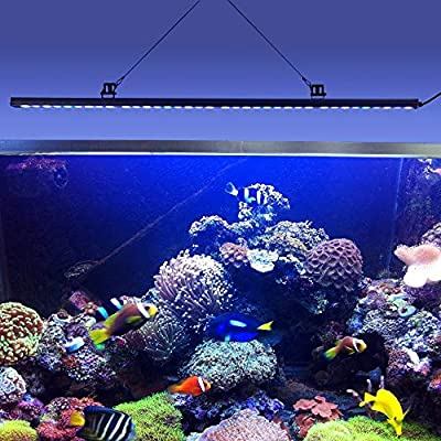 ZWD 108W IP65 imperméabilisent la Lampe de Bande de Guide Optique d'aquarium de LED pour la Croissance de Corail de récif de sel/Eau de mer/éclairage de réservoir de Poissons d'usine