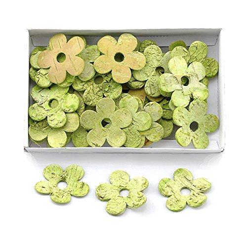 TGG Lot de 36 fleurs en bouleau vert à 5 feuilles ouvertes 5 cm