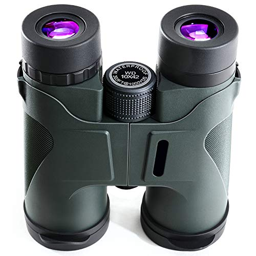 SGGMRR Binoculares 10X42MM Ocular Grande, Todo el Metal, telescopio Impermeable al Aire Libre con Campo de visión Claro Adecuado para Senderismo, Tiro, Tiro, Turismo, Caza, telescopio de Gran Angular