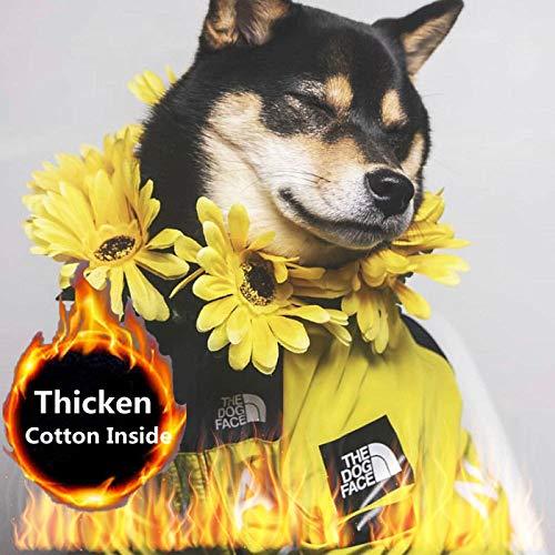 The Dog Face, dicke Hundekleidung, Baumwolle innen, Hunde-Winterjacke, Haustier-Regenmantel, Haustier-Outfit für Kostüm, Geburtstagsparty (gelbe Flagge, 2XL)