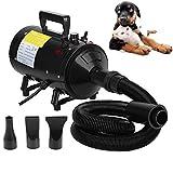 ZanGe 2800W Dog Hair Dryer Dog Cat Pet Grooming Hair Dryer Hairdryer Fur Blower Variable Speed Motorbike Motor Heater Blaster with 2.5m Flexible Hose and 3 Nozzles Black