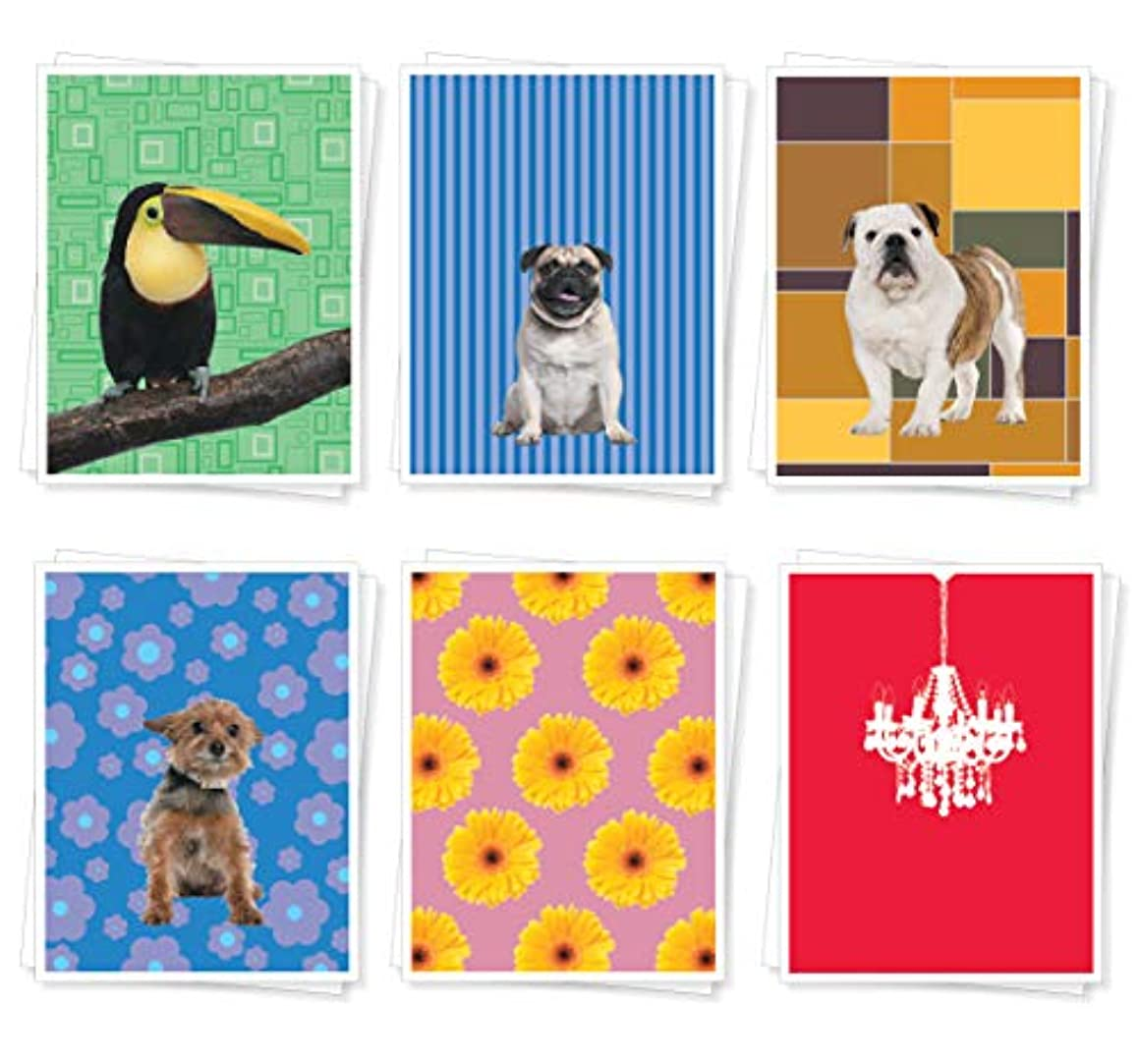 Apartment 2 Cards BESTASSORT12 Set of 18 Assorted Best Selling Mixed Blank Cards, Multicolor 18 Piece