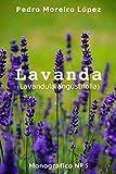 Lavanda: (Lavandula angustifolia) (Monográficos nº 5)