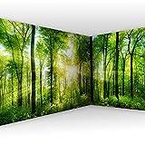 murando Eckfototapete Wald 550x250 cm Vlies Tapeten Wandtapete XXL Moderne Wanddeko Design Wand Dekoration Wohnzimmer Schlafzimmer Büro Flur Landschaft Natur grün Baum c-A-0058-a-b
