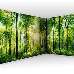 Eckfototapete Wald