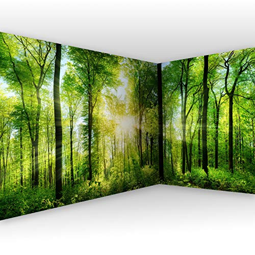 murando Eckfototapete Wald Bild