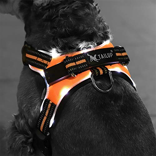 PAWZ Road Dog Harness Illuminated and Reflective HarnessKeep Your Dog Visible in Dark Features Super Led Light USB Rechargeable Lightweight and Rainproof