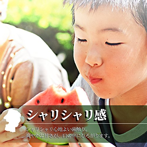 山形県産『尾花沢スイカ』