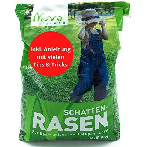 Premium Schattenrasen Rasensamen schnellkeimend für den Herbst 2,5kg = 70m² | dürreresistent, robust, tiefgrün | Ideal für Rasen Reparatur, Rasen Nachsaat, Neuansaat