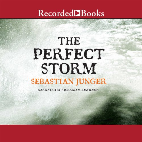The Perfect Storm cover art