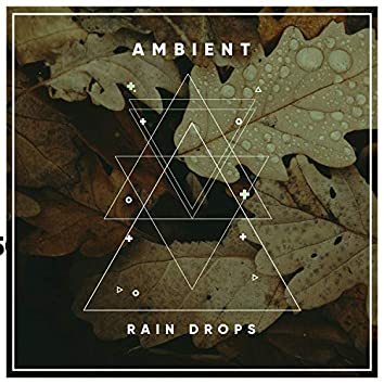 #16 Ambient Rain Drops for Zen Meditation & Relaxation