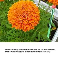 Garden Meter Soil for Garden for Plant