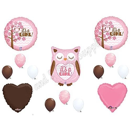 Baby Shower Decorations Owl Amazoncom