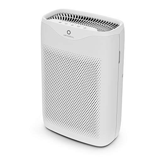 Budget Room Air Purifiers Reviews