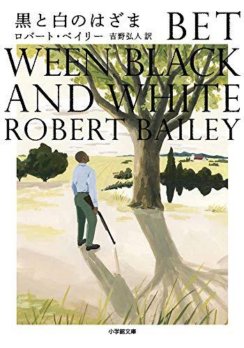 黒と白のはざま (小学館文庫)