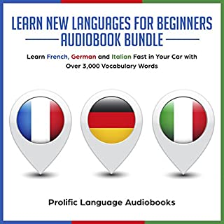 Learn New Languages for Beginners Audiobook Bundle cover art