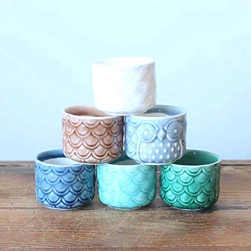 YUCHAO 6PCS Keramik Blumentopf, Owl Sukkulenten Töpfe, Desktop-Kleine Topftöpfe...