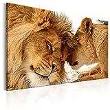 murando Cuadro en Lienzo Leon 120x80 cm 1 Parte Impresión en Material Tejido no Tejido Impresión Artística Imagen Gráfica Decoracion de Pared Leon Animales Africa g-B-0034-b-c