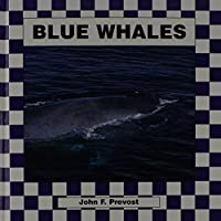 Blue Whales 1562394754 Book Cover