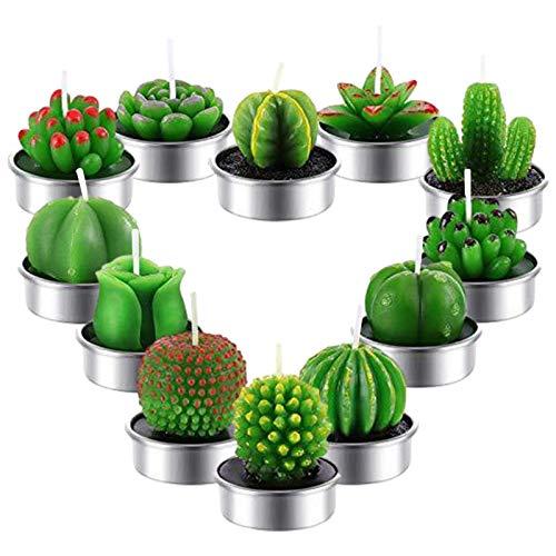12 Stück Kaktus Kerzen - Pflanzen Kerzen Handgefertigt, Mini Vivid Kaktus Teelicht, Teelicht Kerzen Für Party, Geburtstag, Hochzeit, SPA, Home Dekoration