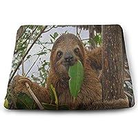 低反発クッション セット ベロア 椅子用 低反発座布団 35*38*3cm 四角 厚い 低反発 ヌードクッション 洗える 流行に敏感なナマケモノの森