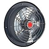 BDRAX 250 Industrial Axial Axiales Ventilador Ventilación extractor Ventiladores ventilador Fan...
