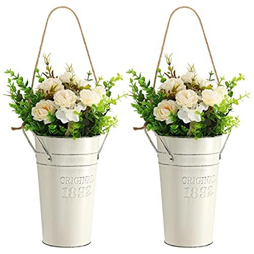 Roylvan 2er Set Hängende Blumentöpfe...