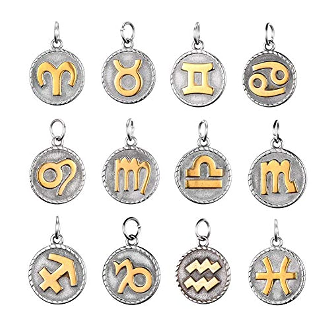 PH PandaHall 12pcs/Set 316 Stainless Steel Pendants Flat Round Golden & Stainless Steel Color 12 Constellation Pendants Charm Beads for Necklace Bracelet Jewelry Making 26x18x3mm