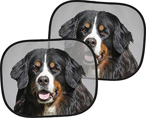 BERNER Sennenhund - 2 x Auto-Sonnenschutz, 4 Saugnäpfe, 44 x 38 cm, Zweier-Set - BNS 01